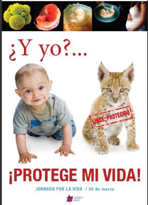 20090317014041-protege-mi-vida.jpg